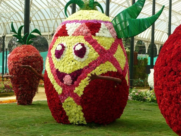 lalbagh flower show