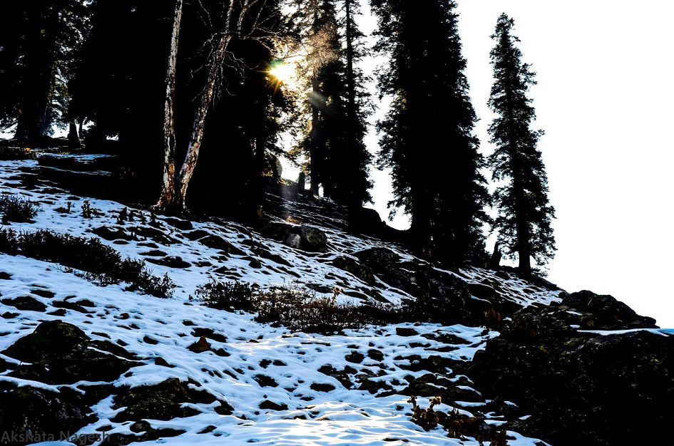 The Immortal Magnificence of Kashmir