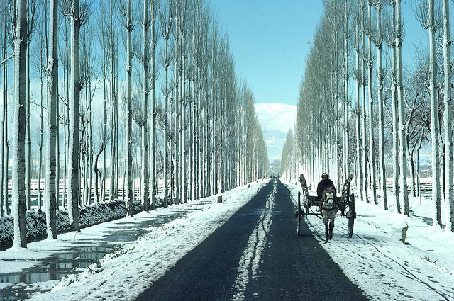 Travel Destinations to explore this Winter in India