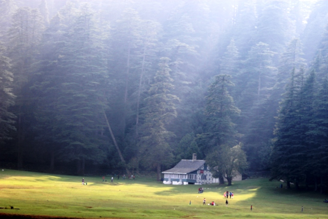 The breathtaking views of the meadows in Khajjiar. Photo - Amit Sengupta