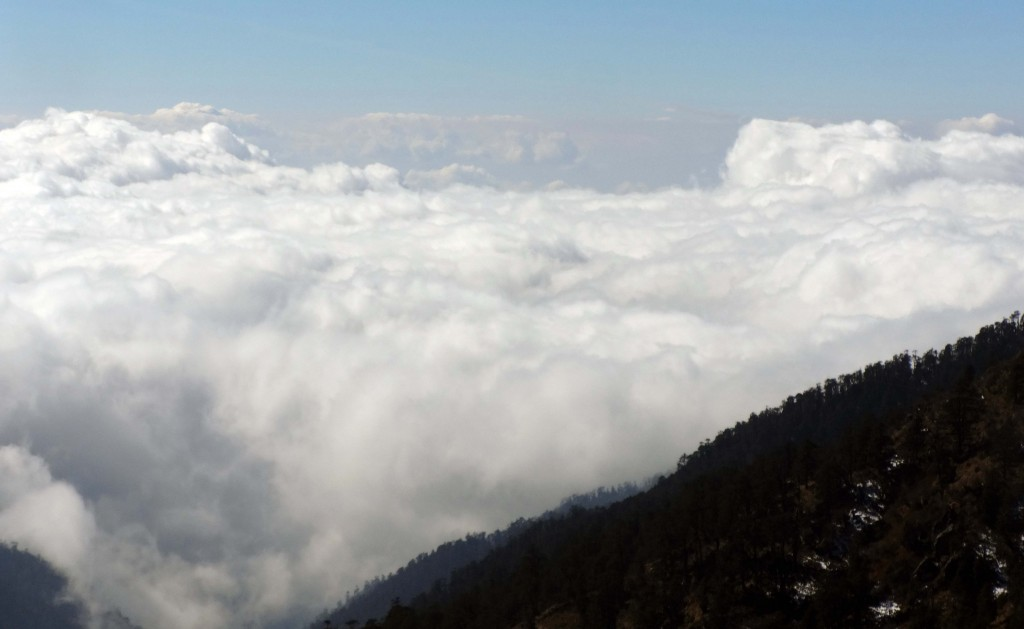 Above the clouds! Such sights could await you at the  treks!