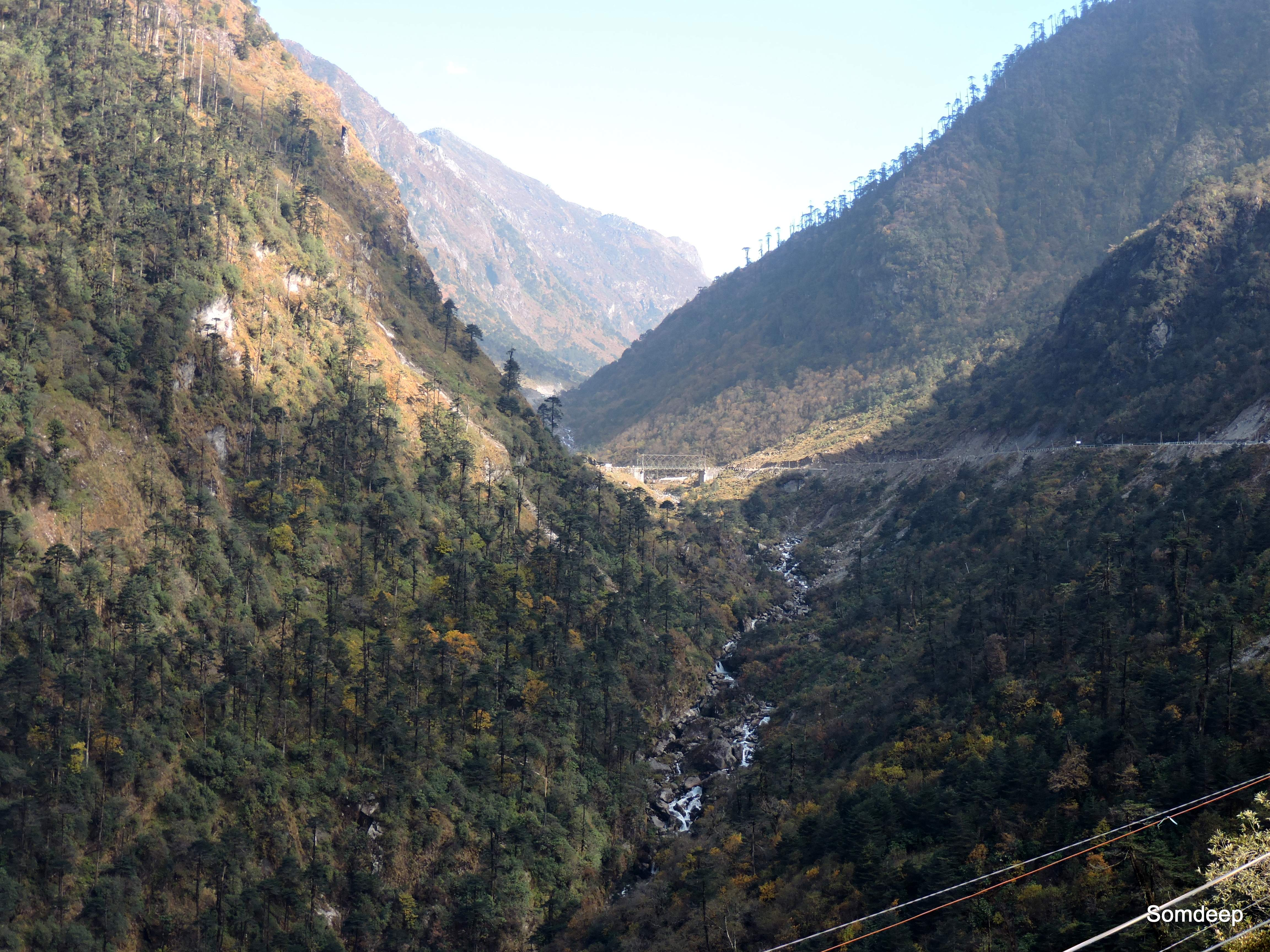 Pine forests, streams- alleys through the Himalayas